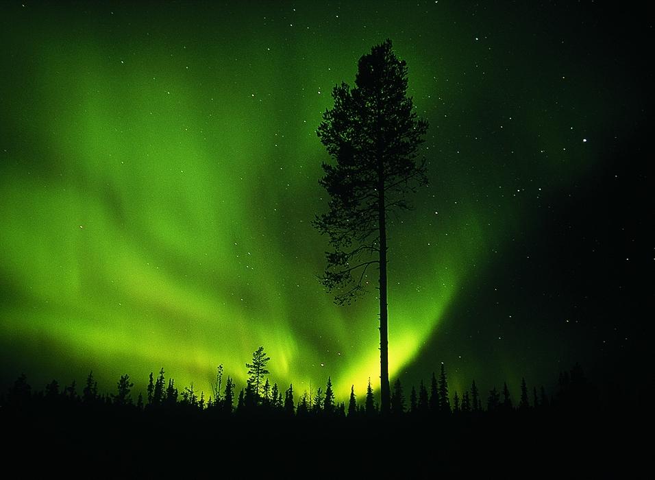Az éjszaki fény olyan a Föld északi sarkánál a légkörbe behatoló protonok és elektronok által keltett fényjelenség, amely leginkább március-áprilisi és szeptember-októberi időszakban látható.